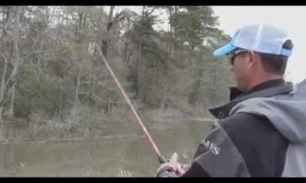 Advanced Angler Video Pro Tip – Fishing Flooded Areas in Spring with Casey Ashley