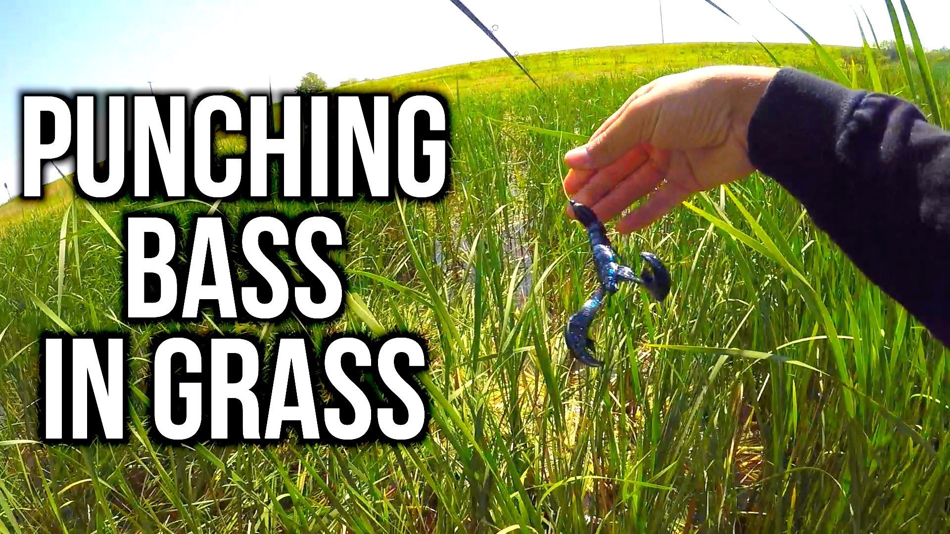 Flair – PUNCHING for Bass in Nebraska?!?!