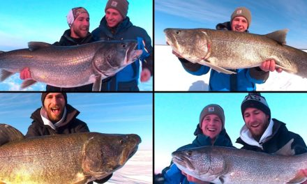 Uncut Angling – Manitoba – 4 TROPHY LAKERS in 24 HOURS!!!