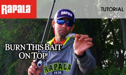 The Rapala DT Fat 01: HOW TO FISH