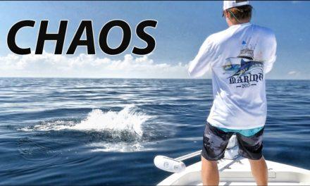 Scott Martin – Double Sailfish – Fishing trip turns into Craziness – Saltwater Fishing Sailfish