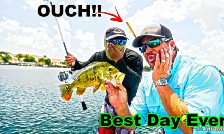 Scott Martin – Exploding Peacock Bass in Miami. We absolutely destroy them. Urban Fishing
