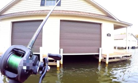 Flair – FISHING UNDER A HOUSE?!?!
