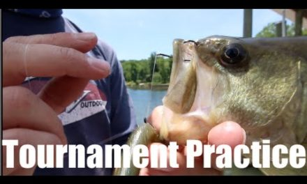 – FLW Costa Bass Fishing Tournament Practice