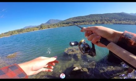 Fishing In The Mountains For Trout