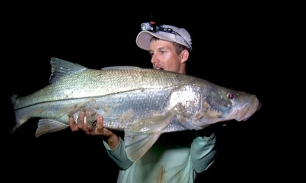 BlacktipH – Fishing for Monster Snook from the Beach