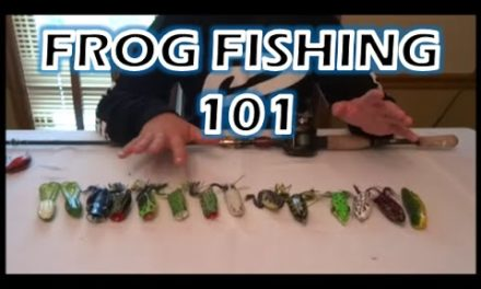 HOW TO FISH A TOPWATER FROG IN-DEPTH – Bass Fishing