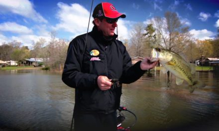 How KVD Finds Bass in Spawning Grass Beds