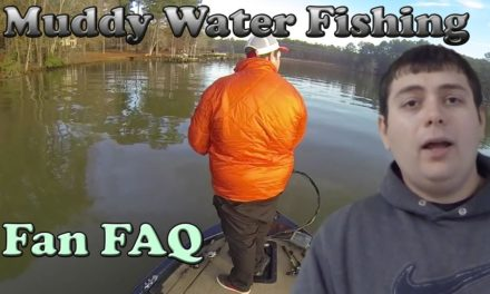 – How to Pick Muddy Water Lures for Bass Fishing ~ FAN FAQ
