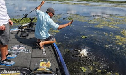 Scott Martin – I Almost Lip an Alligator! Subscriber Winner Bass Fishing