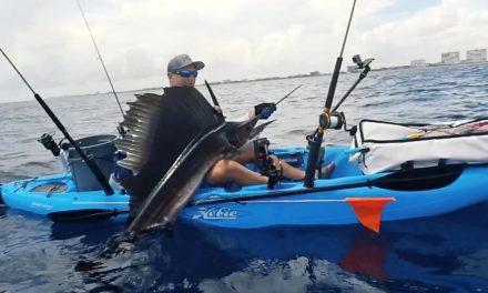 Kayak Fishing for Sailfish and Bonito