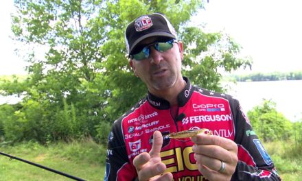 MajorLeagueFishing – Keeping the Salad off Horny Toad Baits, Tip from Gerald Swindle