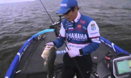 LIVE Rewind: Takahiro finds a monster bass on Wheeler Lake