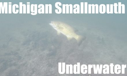 – Michigan Smallmouth – Underwater Footage Vlog