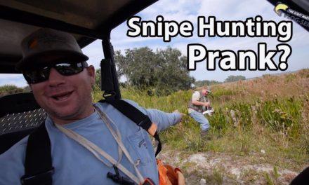 Scott Martin VLOG – Real or a Prank? Snipe Hunting through a swamp with 12 gauge Shotguns