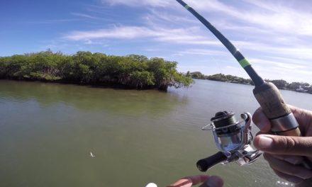 Lawson Lindsey – Saltwater Micro Fishing