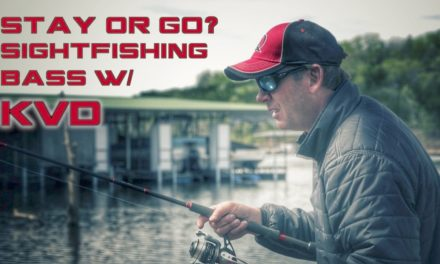 Sight Fishing Bass With KVD: Stay or Go?