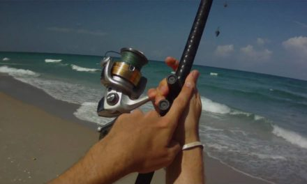 Surf Fishing – How to Cast a Surf Rod