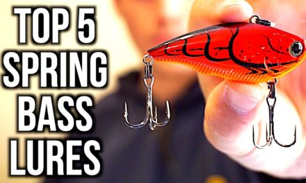 TOP 5 SPRING BASS FISHING LURES – Bass Fishing Tips
