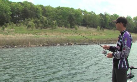 Texas Rigged Drop Shot with Aaron Martens
