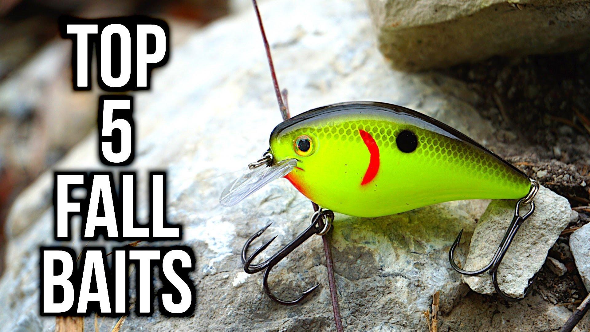 Top 5 Fall Bass Fishing Lures - Angler HQ