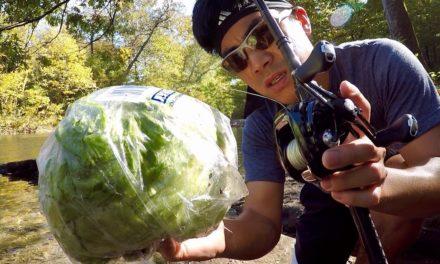 WEIRDEST FISHING CHALLENGE EVER??? (Lettuce vs. Fly Rod)