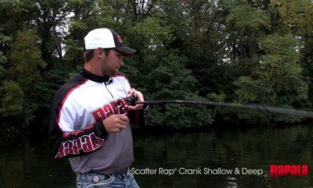 Rapala Scatter Rap® Crank Shallow & Crank Deep