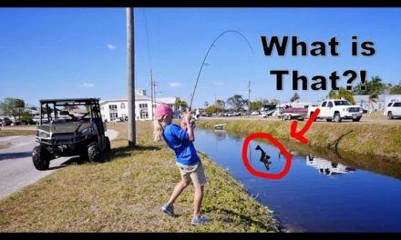Scott Martin VLOG – 11 Year Old Catches a GIANT Bass and a Super WEIRD Fish