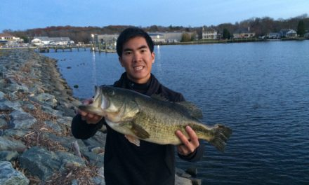 20 LB Limit of Bass Caught from the BANK on the Northeast River in MD