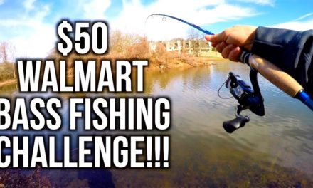 Flair – $50 WALMART BASS FISHING CHALLENGE!!! ft. Jon B and Apbassin
