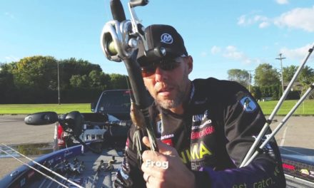 Aaron Martens Top 5 Fall Baits for Bass Fishing
