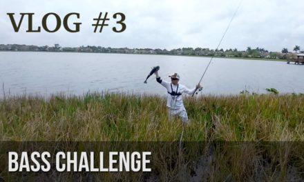 BlacktipH – Bass Fishing Challenge!  – BlacktipH vs HECZWE vs LunkersTV