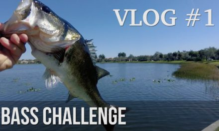 BlacktipH – Bass Fishing Challenge! – ft. LakeForkGuy & 1Rod1ReelFishing