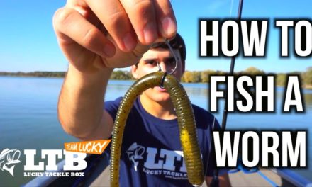 Flair – Bass Fishing Tips – How to Fish a Plastic Worm
