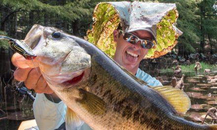 LakeForkGuy – Bass Fishing in Frog Heaven