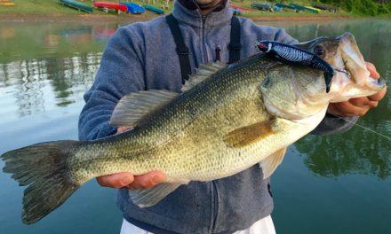 Big Bass Fishing at Little Seneca Lake – Topwater, Drop Shotting, and the Deeper Fishfinder!
