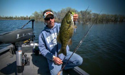 Fishing High & Low