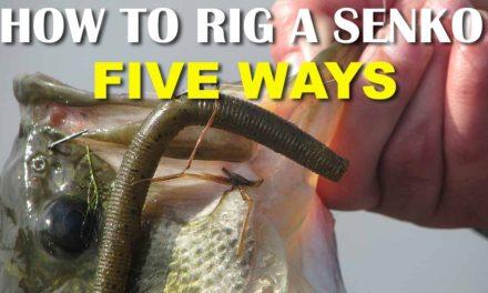 – How To Rig A Senko 5 Ways | Bass Fishing Tips