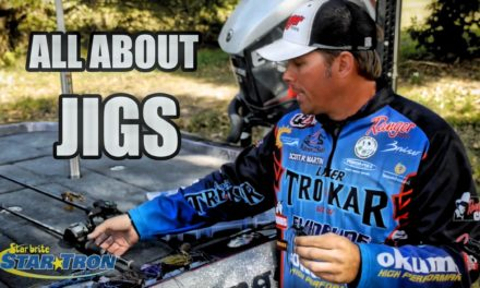 – How to fish Jigs 101 – Everything you need know about fishing jigs for big bass