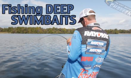 – Pro Tips – How to fish a Swimbait Deep – What you need to know to catch Big Bass