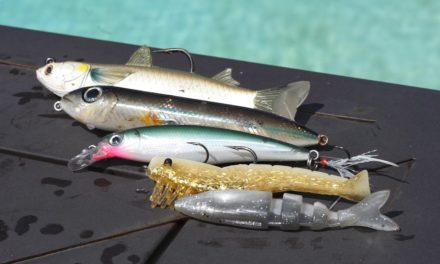 Lawson Lindsey – TOP 5 INSHORE LURES