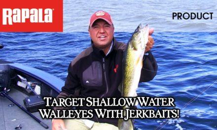 Rapala® Shadow Rap® for walleye