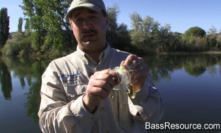 – Advanced Spinnerbait Fishing | Bass Fishing