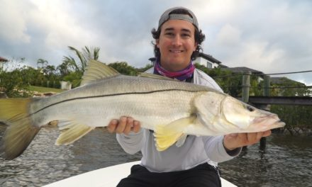 Lawson Lindsey – Big Fish on Jerk Baits