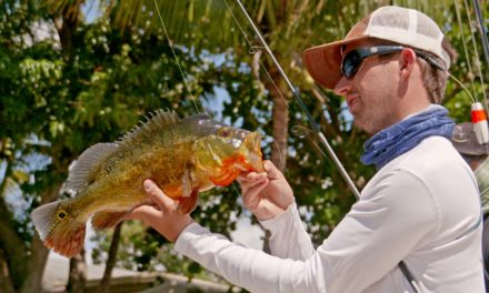 BlacktipH – Exploring New Waters on Lake Ida – 4K