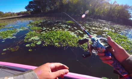 Lunkers TV – Fishing Texas Grass For BIG Bass