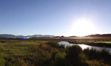 Fly Fishing Eastern Sierra Nevadas
