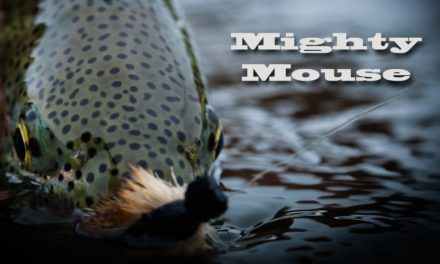 Dan Decible – Mighty Mouse – Alaska Mouse Fishing