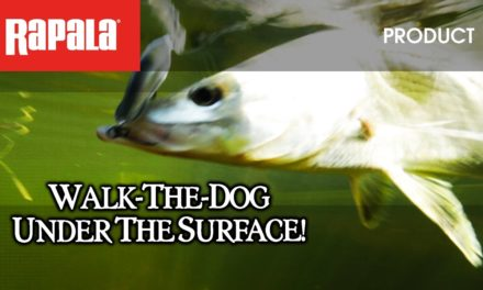 Walk-the-dog under the surface with The Rapala® X-Rap® Saltwater Subwalk™