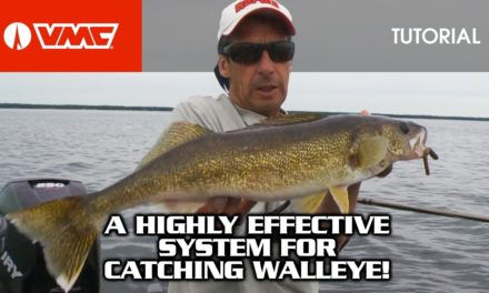 Walleye fishing with the VMC® Spindrift Spinner Rig
